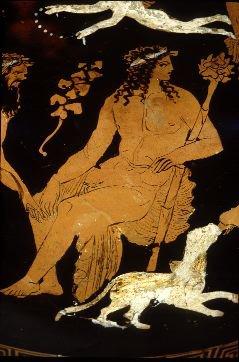 hecaterus